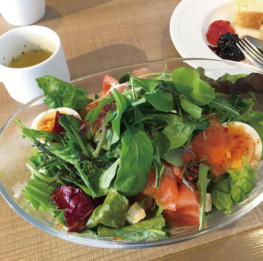 食物繊維で善玉菌を増やす サラダ